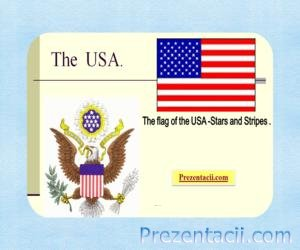 The flag of the USA - Stars and Stripes