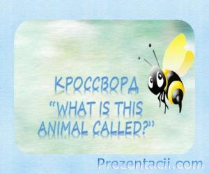 "Кроссворд ""What Is This Animal Called"