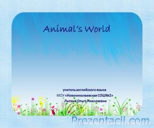 Animal�s world