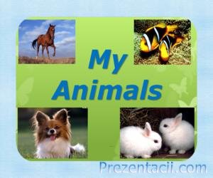 My animals (2 класс)